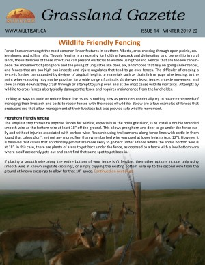 Grassland Gazette Winter 2019-2020